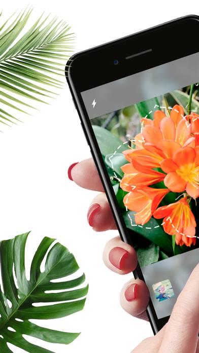 Plantyx: Reconnaissance Plante Le Téléchargement De L'Application Mise À Jour May 20 - Free ...