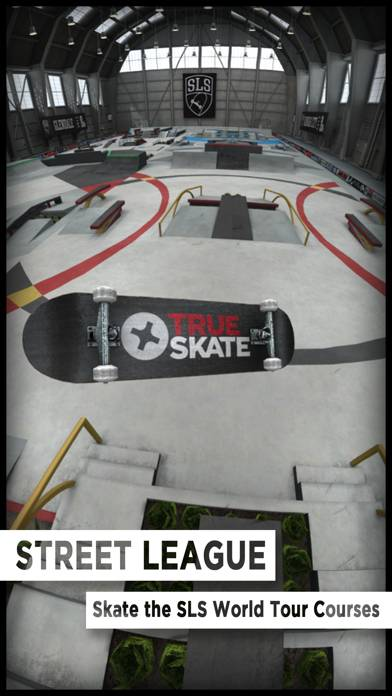 True Skate screenshot #3